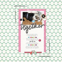 pink reptile designs: FEBRUARY BLOG CHALLENGE