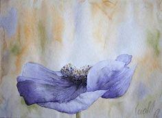 Anemone 2 by veredit - Isabella Kramer