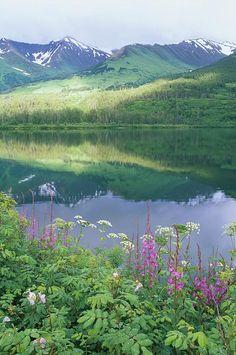 Summit Lake, Sunbeam On Forest - Alaska