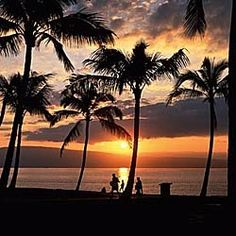 Maui WITH A MOJITO