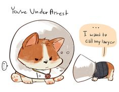 wherever you go, there you are — kadeart: Kingsdog : The Fluffy Service Potato Man, Kingsman The Secret Service, Tailor Shop, What To Draw, Funny Animals, Funny Pets, Chibi, Nerd, Creatures
