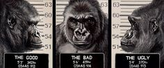Hayley Goodhead- The Good, The Bad, The Ugly  It's not just the obvious reference to the classic 1967 film and it's humorous connotations that makes this a sought after painting it is also technically brilliant, Hayley has captured the life like characteristics of a gorilla.