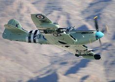 British world war two Fairey Firefly naval fighter