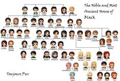 This is good, but Weasleys are pretty much missing -Septimus Weasley was Arthur's father, and if I remember right from the time I examined the Black family tree, Molly comes from somewhere too.