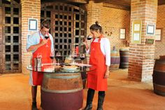 Chile, Santa Cruz, Valle Colchagua, Viña MontGras, Faça Seu Próprio Vinho