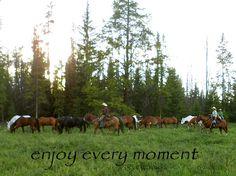 Wrangling horses at Triple J Ranch, Montana