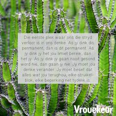 13612319_1194877757229659_2221220442772510089_n Scrapbook Quotes, Afrikaans Quotes, Daily Bread, Inspirational Quotes, Faith, Christmas Ornaments, Holiday Decor, Words, Management