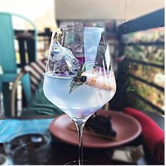 The Catalan: Uncle Vals gin, tonic, grapefruit, rosemary, juniper berries, orchid - teleferic_walnut_creek