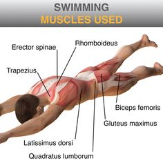 How To Prevent Back Pain ... To Prevent Back Problems 015m1_SWIMMING – How To Prevent Back Pain