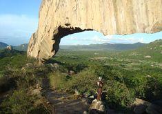 parque buique pernambuco brazil - Pesquisa Google