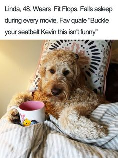 20 Hilarious Dog Bio's That Will Probably Remind You of Someone You Know - BlazePress