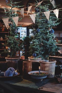 Jul i Trädgårdsbutiken - Victoria Skoglund
