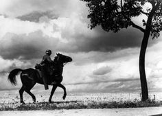 Waffen-SS soldier on a horse