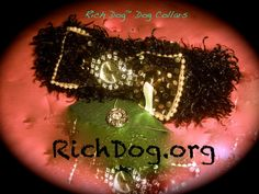 """- RICH DOG   Dog Collars : Rich Dog Collar Abstract Music Video Project. WatchDog Collar™ Designs by Clazi. Music by Jeff Chaz """"Ain't Doin' Too Bad"""" Money Hog Harley Watch Dog Collar – Designed and hand sewn and handcrafted 100% in U.S.A. by Clazi.  Ritz Shitzhu™ Rich Dog Watchdog Collar™ Dog Collar video produced by Clazi. A Dog collar with a WATCH, (yes, a real watch) designed and handmade by Clazi. Original song """"Sweet Sweet Love"""" is written..."""