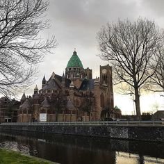 Rainy Haarlem and St. Bavo Cathedral.  It may be grey but the spring is in the air. You can really feel that the weather is changing.  #gloomandglow #tirfebruary #theinstaretreat #haarlem #netherlands #stbavoscathedral #stbavo #architecture #dutcharchitecture #view #holandia #architektura #katedra #holenderskaarchitektura #holenderskapogoda #deszcz #widok #rain #deszczowydzień #spring #wiosna #lente #architectuur #nederland #regen #uitzicht #regenachtigedag #kathedralebasilieksintbavo…