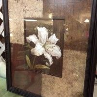 Floral Picture - Art - Show Ad | Post Your Piece