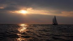 Sifu na Morzu Północnym