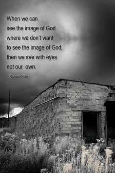Richard Rohr on seeing as the Divine does... (from cac.org)