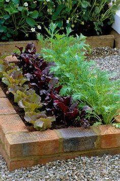 Kreatív kerttervezés: ültess guszta konyhakertet!