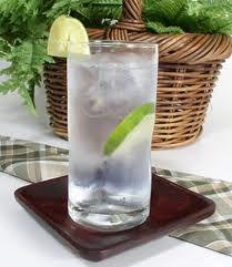 Paquetaense: Gin-Tônica | Drink | Coquetel