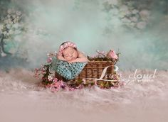 Digital backdrop background newborn baby girl by LaceCloudStudio