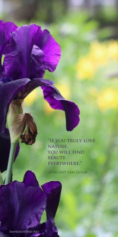If you truly love nature, you will find beauty everywhere. Favorite garden quote.