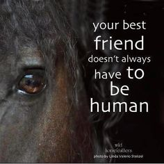 Your best friend doesn\'t always have to be human.