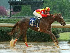 Rose to Gold, Fantasy Stakes