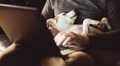 Can a dog be as essential to a writer's success as an agent or an editor? Author Natalie Cox explores the benefits of having a dog as a writing companion. Writing Pens, Letter Writing, Future Quotes, When You Believe, Penguin Random House, Close Your Eyes, Trust God, Great Books, Creative Writing