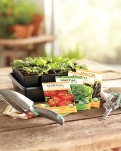8 Mother's Day gift ideas for moms who love to garden.