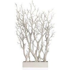 White Branch Tree In Pot