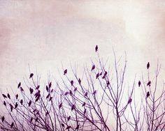 I like this!!  Purple Wall Art  birds lavender wall art spring by CarolynCochrane