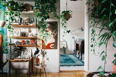 Series Friends of Friends: The Jungle Girl's Home – House Plants Deco House, Plantas Indoor, Sweet Home, Living Spaces, Living Room, Girl House, Interior Exterior, Interior Plants, Decoration Table
