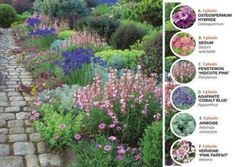 Installer en blomsterramme til sommeren - Jack West Landscape Design Plans, Garden Design Plans, Patio Plants, Garden Plants, Planting Plan, Colorful Plants, Garden Planning, Garden Projects, Garden Inspiration