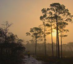 Sunrise at Western Lake - Grayton Beach State Park, Northwest Florida