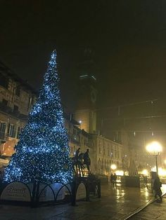 Christmas tree in Verona am Gardasee.