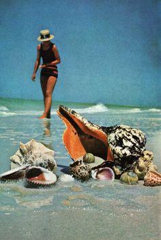 The Gulf Beaches await.....