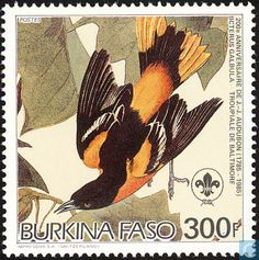 Baltimore Oriole stamps - mainly images - gallery format Postage Stamp Design, Birds Of America, John James Audubon, Vintage Stamps, Baltimore, Mail Art, Stamp Collecting, Bird Art, Sierra Leone