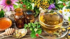 Ezek a legjobb gyógynövények nátha, megfázás ellen | NLCafé