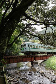 Oigawa Railway #japan #shizuoka