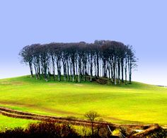 Photographic  art  print Lifton Tump  Devon. near by Chrissiephoto