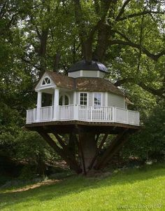 Cool tree house; classy treehouse