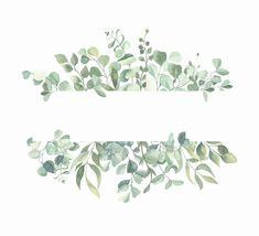 Plant Painting, Plant Art, Flower Background Wallpaper, Flower Backgrounds, Plant Illustration, Watercolor Illustration, Painted Leaves, Hand Painted, Feuille Eucalyptus