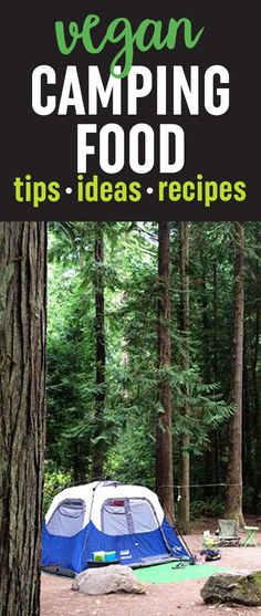 Vegan camping food ideas - breakfast, lunch, snack, dinner, and even s'mores! Plus, a tasty recipe for PB&J Overnight Oats.