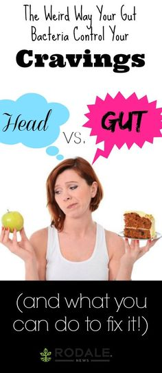 The secret to overcoming the siren call of the donut table might be in your belly. http://www.rodalenews.com/gut-bacteria-diet?ocid=Soc_Pinterest_Food_Aug19_GutCravings