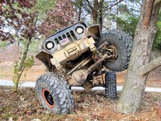 Jeep rock crawler climbing tree.