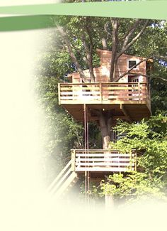 Very affordable custom built tree houses! Look at the portfolio and each style lists pricing info!