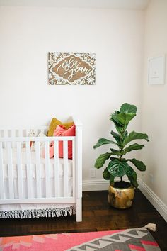 White nursery, big plant, pink accents