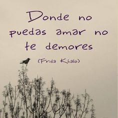 """""""Donde no puedas amar no te demores"""". (Frida Kahlo)"""
