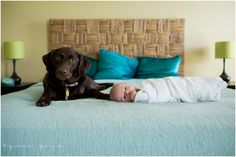 lifestyle newborn session | collierville lifestyle newborn photographer | pea pie photography